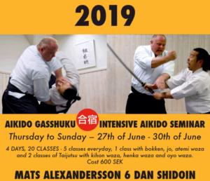 Aikido Gasshuku in Stockholm Sweden with Mats Alexandersson 6 dan Shidoin